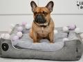 legowisko domek mata dla psa kota kanapa lauren design (14)
