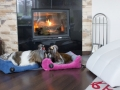 Dog & Cat bed lauren design 32