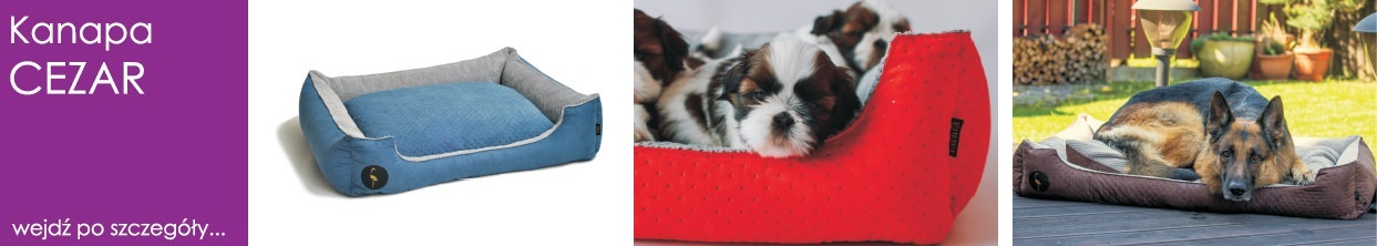legowisko dla psa i kota cezar kanapa posłanie lauren design