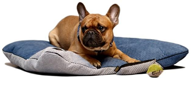 kanapa legowisko poducha dla psa kota lauren design