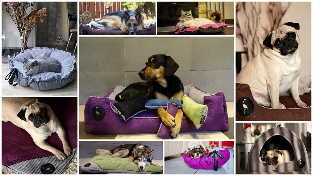 Couchages et jouets pour les chiens et les chats lauren design