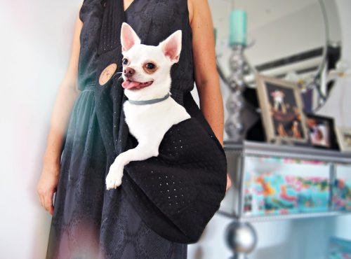 torba listonoszka Sara, torba dla Chihuahua, Lauren design 4